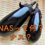 ネットワークカメラのトレンドは「無線」「NAS」「スマホ」の3本柱