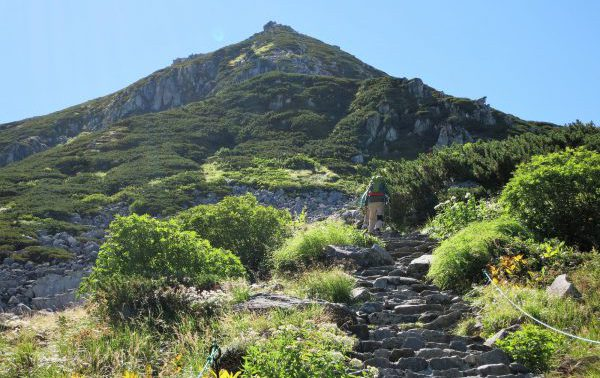 登山道のイメージ写真
